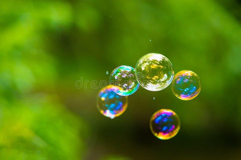 Burbuja de jabón del arco iris fotos de archivo