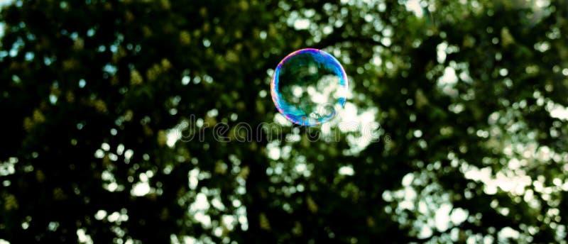 Burbuja de jabón que flota en el aire imagen de archivo