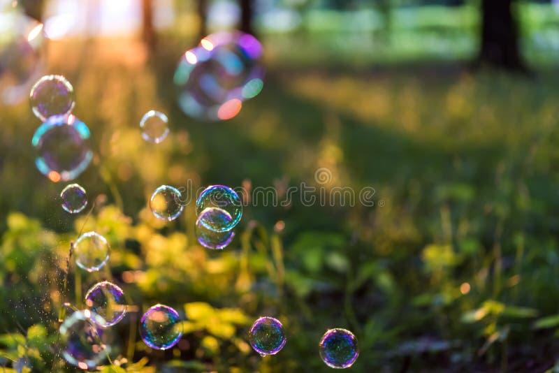Burbujas en el sol fotos de archivo