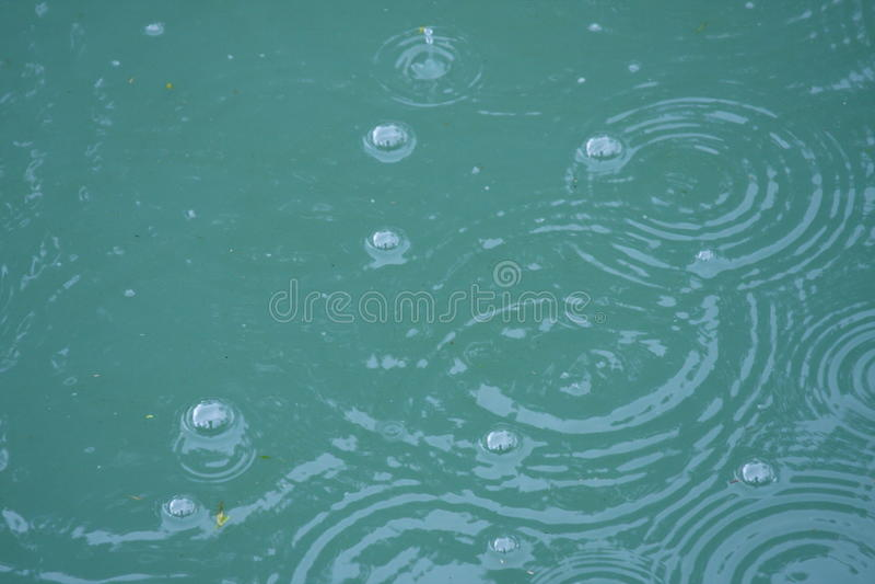 Burbujas en una charca fotografía de archivo