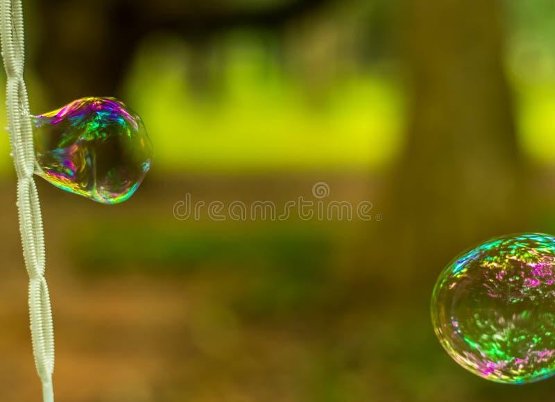 Burbujas que soplan en el parque imágenes de archivo libres de regalías