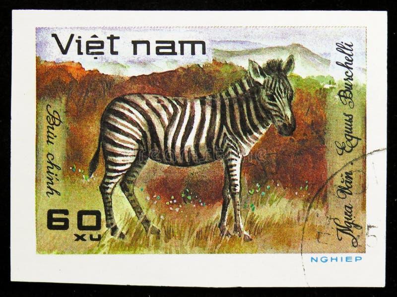Burchell's Zebra (Equus burchelli), World wild animals serie, circa 1981. MOSCOW, RUSSIA - SEPTEMBER 26, 2018: A stamp printed in Vietnam shows Burchell's Zebra royalty free stock image