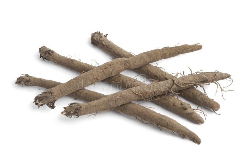Burdock roots. Fresh Burdock roots on white background stock image