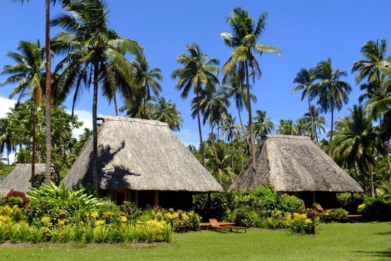 Bure traditionnel avec le toit couvert de chaume, île de Vanua Levu, Fidji photographie stock libre de droits