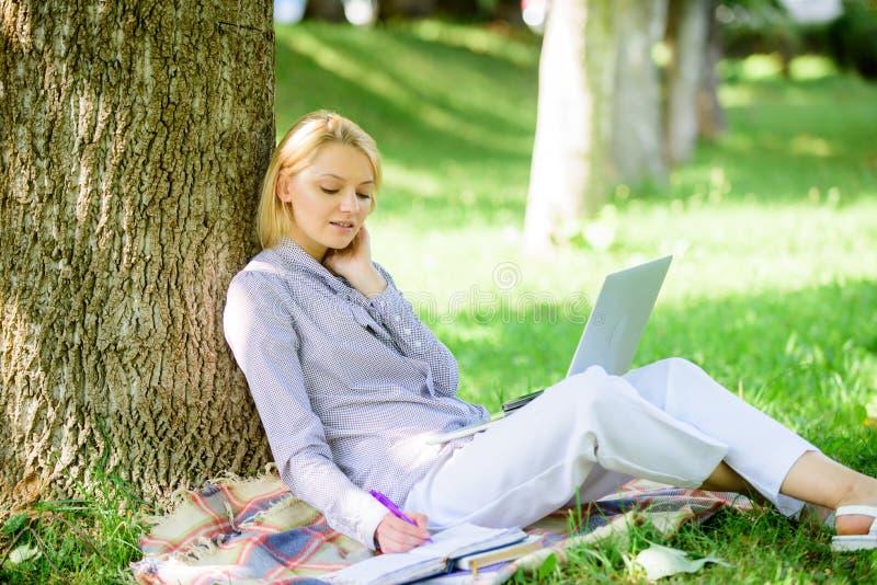 Bureau d'environnement naturel Avantages d'ext?rieur de travail Femme avec le travail d'ordinateur portable dehors maigre sur le  image libre de droits