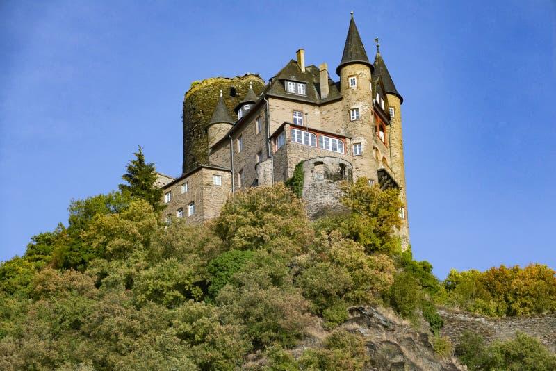 Burg Katz fotografia stock libera da diritti