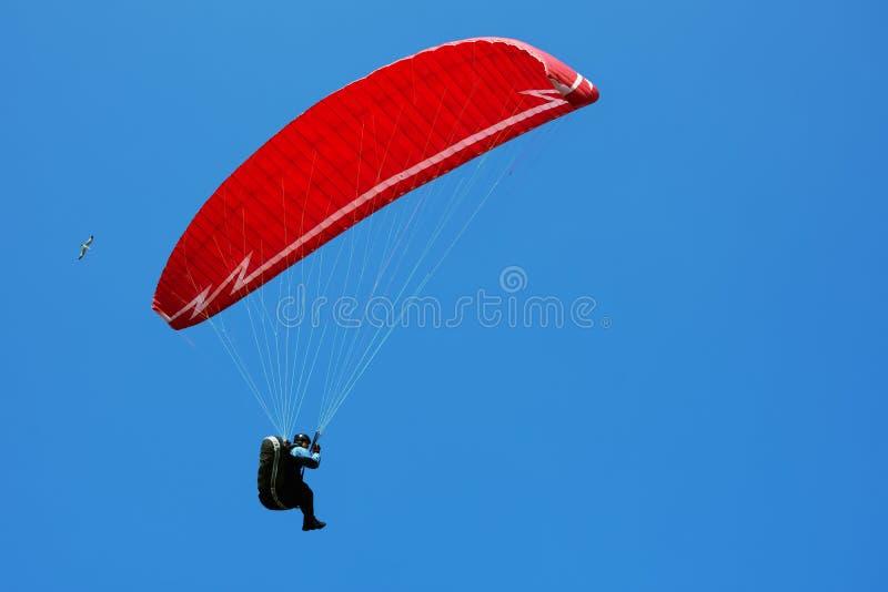 Burgas, Bulgarien - M?rz 2019: Fallschirmspringen ?berdachung im Himmel stockbilder