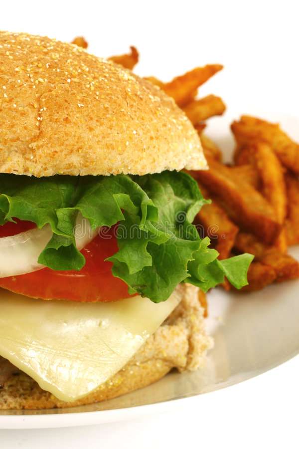 Download Burger stock photo. Image of diet, health, great, cheese - 8109892