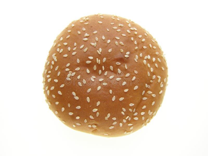 Burger bun royalty free stock images