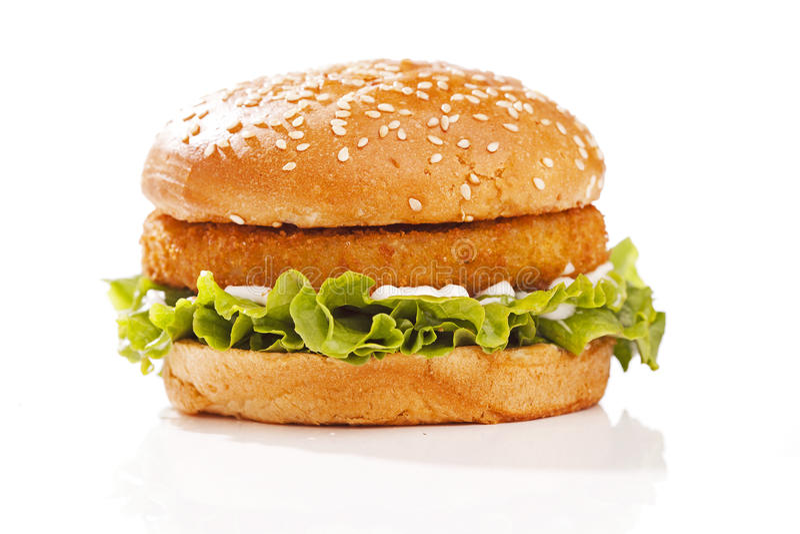 Burger in a bun stock photography