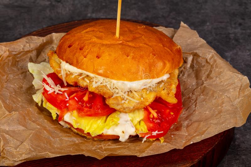 Burger with chicken. And tomatoes stock images