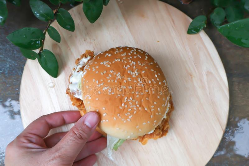 Burger or chicken burger. Taking burger or chicken burger stock photo