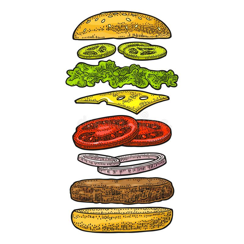 Burger with flying ingredients on white background. Vector black vintage engraving. Burger with flying ingredients include bun, tomato, salad, cheese, onion stock illustration