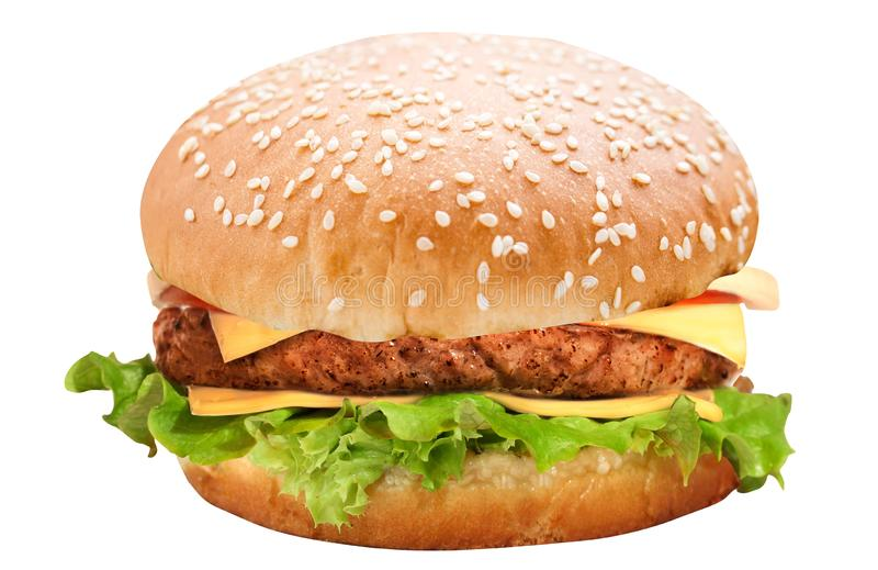 Burger isolated on white stock images