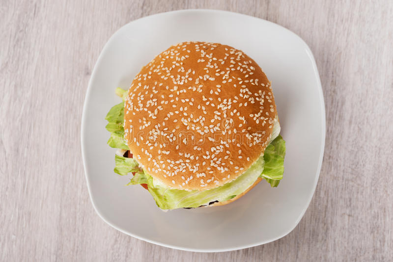 Burger In Plate On Floor stock image