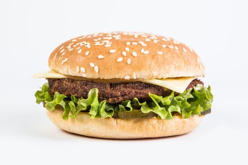 Burger white background. Burger on the white background royalty free stock image