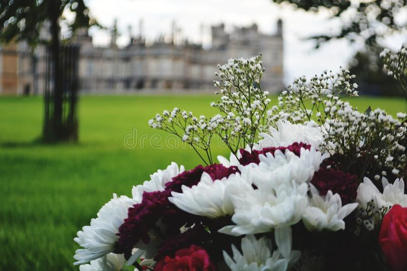 Flowers at Burghley stock images