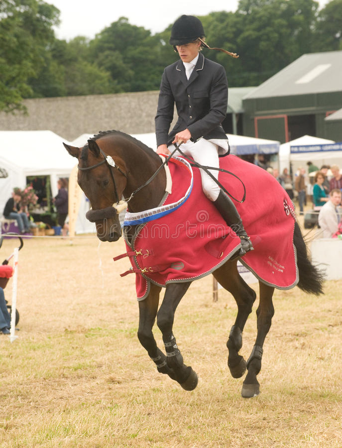 Download Burgie International Horse Trial 2010. Editorial Image - Image: 14808495