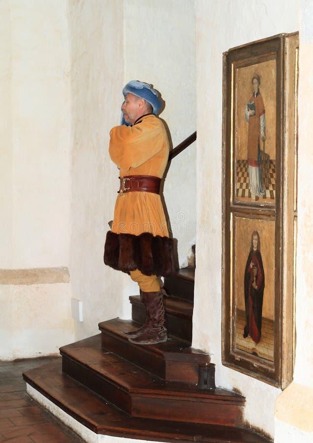 Burgrave foto de stock royalty free