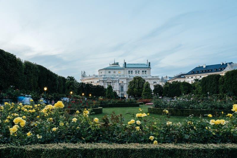 Burgtheater al tramonto, vista da Volksgarten a Vienna fotografie stock