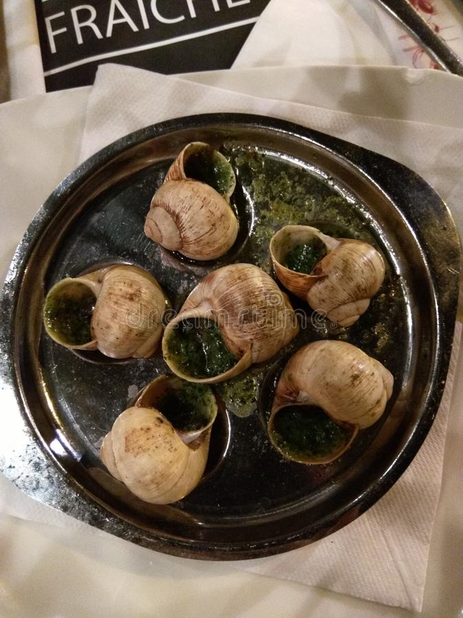 Burgundian snails on the plate stock images