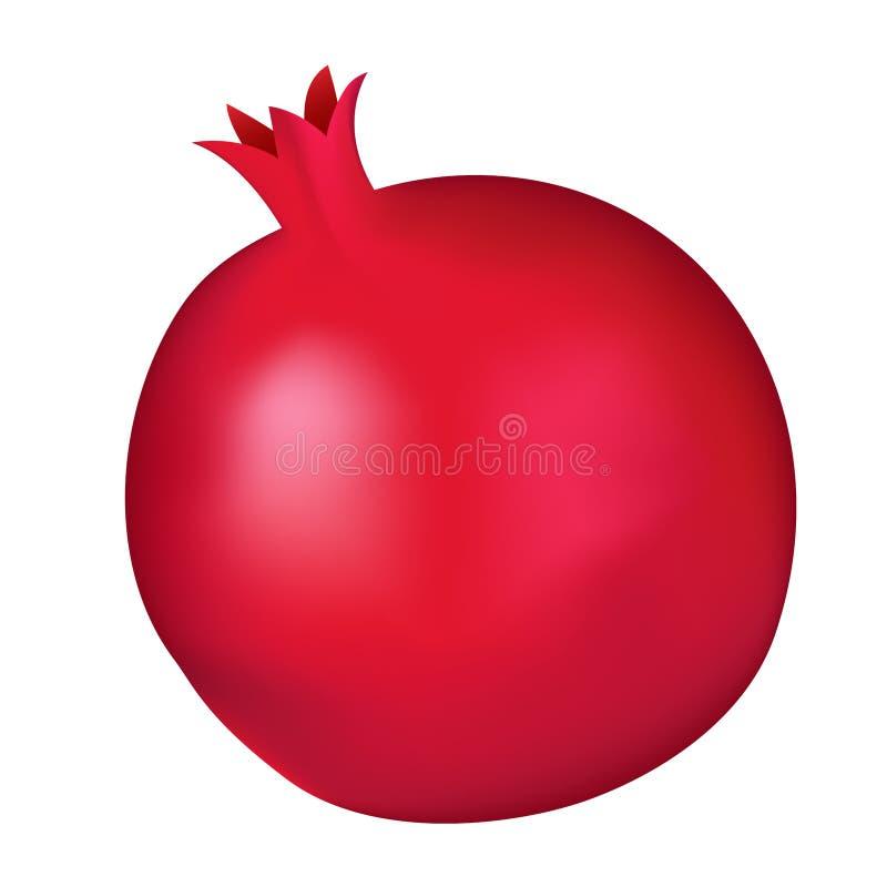 Burgundy κόκκινος γρανάτης που απομονώνεται στο άσπρο υπόβαθρο διανυσματική απεικόνιση