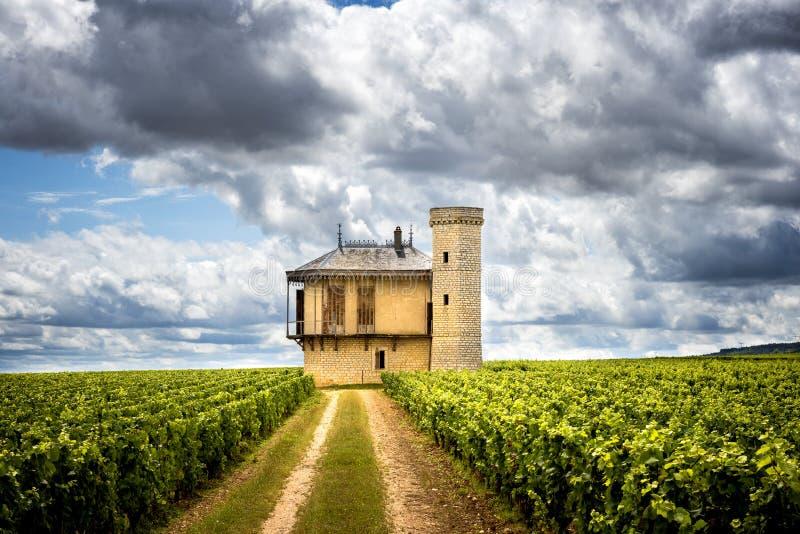 Burgundy, Chateau de La Tour and vineyards, Clos de Vougeot. France. Clos de Vougeot, also known as Clos Vougeot, is a wall-enclosed vineyard, in the Burgundy royalty free stock photos