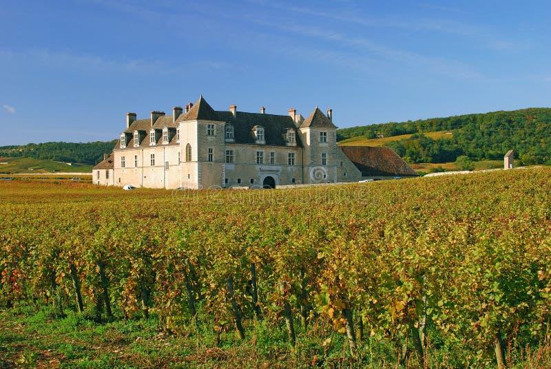 burgundy clos de vougeot стоковая фотография