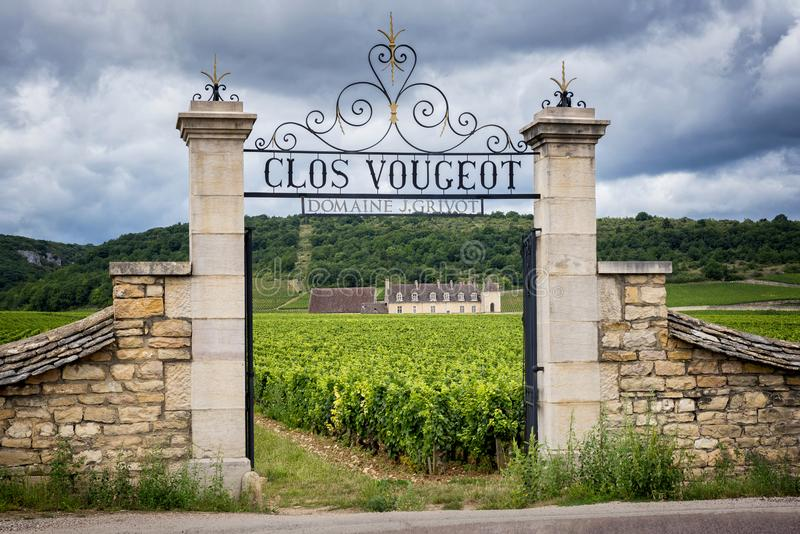 Burgundy, Clos de Vougeot. France. Present on an area of about 50 hectares, Clos de Vougeot is a Grand Cru appellation. royalty free stock image
