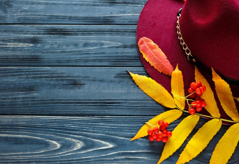 Burgundy  or marsala color hat on a gray wooden background with autumn yellow, red leaves and berries. Flat lay, copyspace stock photography