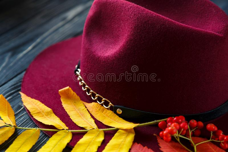 Burgundy  or marsala color hat on a gray wooden background with autumn yellow, red leaves and berries. Flat lay, copyspace stock images