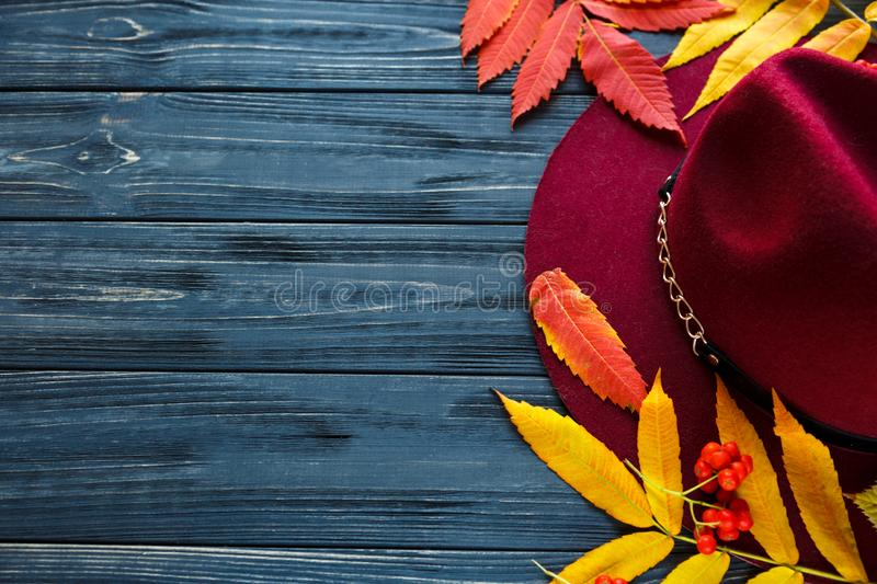 Burgundy  or marsala color hat on a gray wooden background with autumn yellow, red leaves and berries. Flat lay, copyspace royalty free stock photo