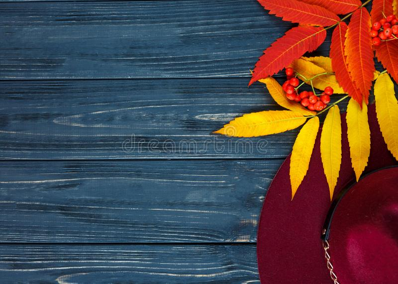 Burgundy  or marsala color hat on a gray wooden background with autumn yellow, red leaves and berries. Flat lay. Copyspace stock image