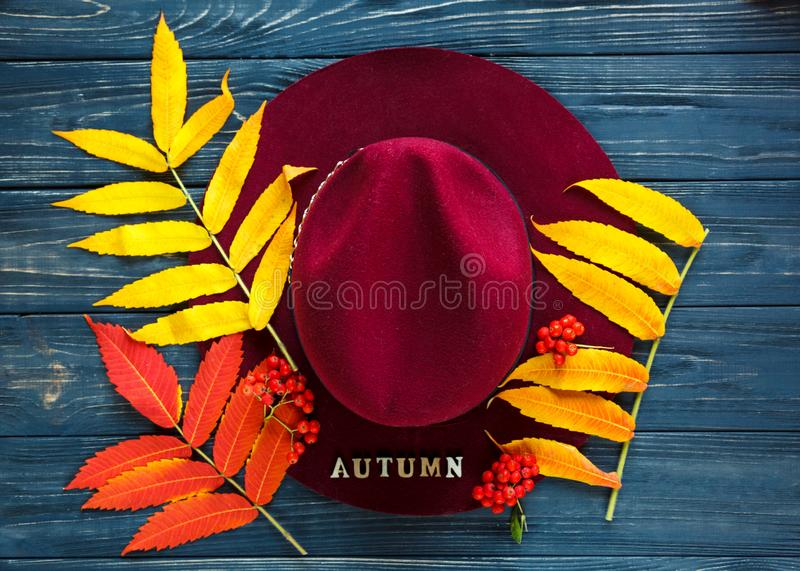Burgundy  or marsala color hat on a gray wooden background with autumn yellow, red leaves and berries. Flat lay. Copyspace royalty free stock image