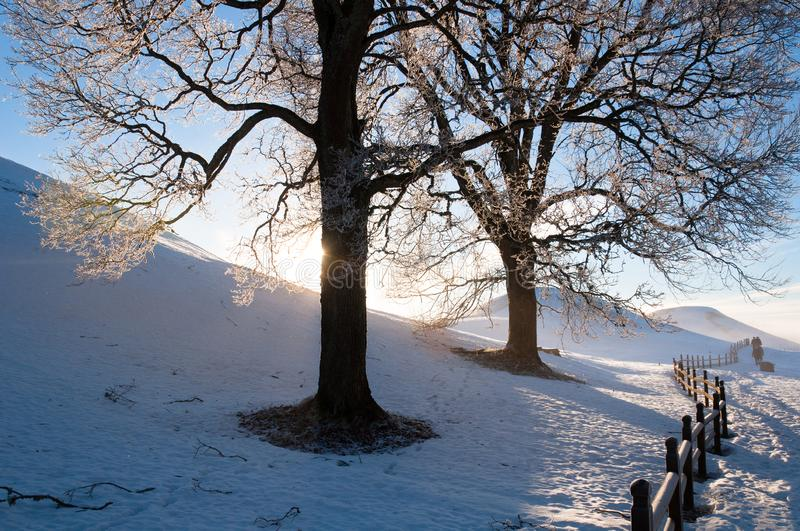 Burial Mounds In Old Uppsala. Free Public Domain Cc0 Image