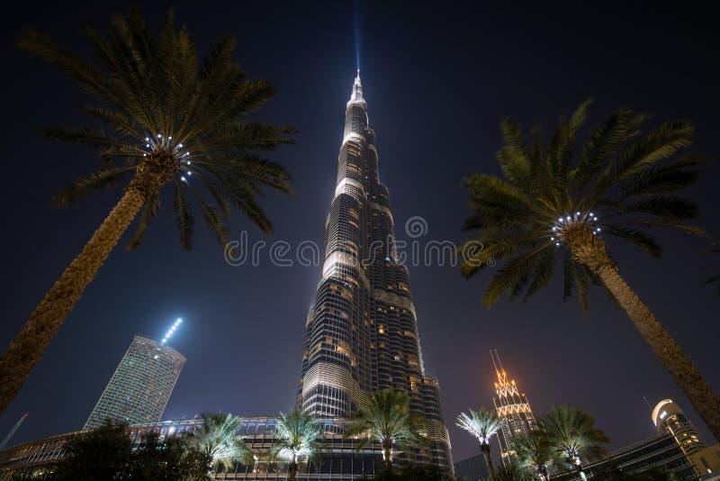 Burj哈利法-在世界在晚上,迪拜,阿拉伯联合酋长国的高楼 免版税库存照片