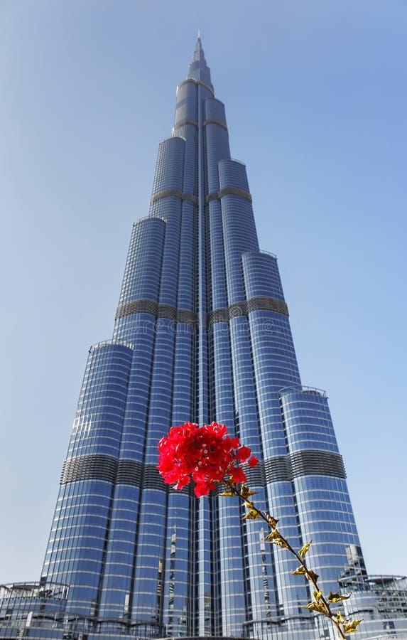 Burj哈利法-在街市Burj迪拜的世界的最高的塔 库存图片