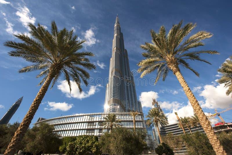 burj Dubai khalifa wysoki wierza uae światowy fotografia royalty free