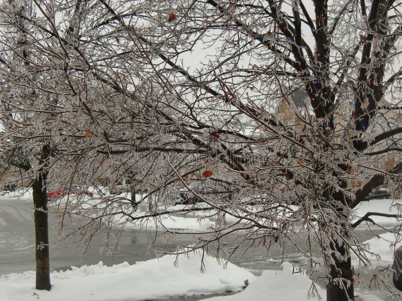 Burlington Ontario Canada nell'inverno fotografia stock