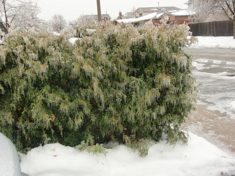 Burlington Ontario Canada nell'inverno fotografie stock