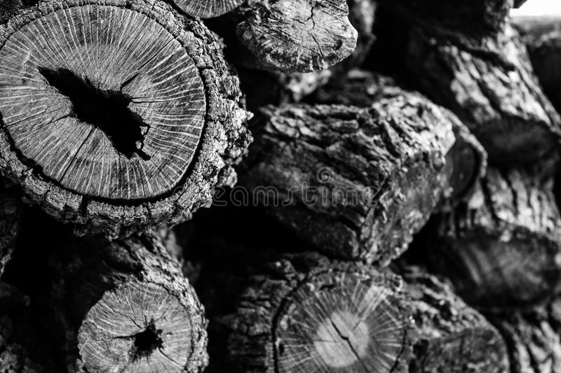 Burly Stack of Logs. Black and white photo of logs still with bark for use in fireplace royalty free stock images