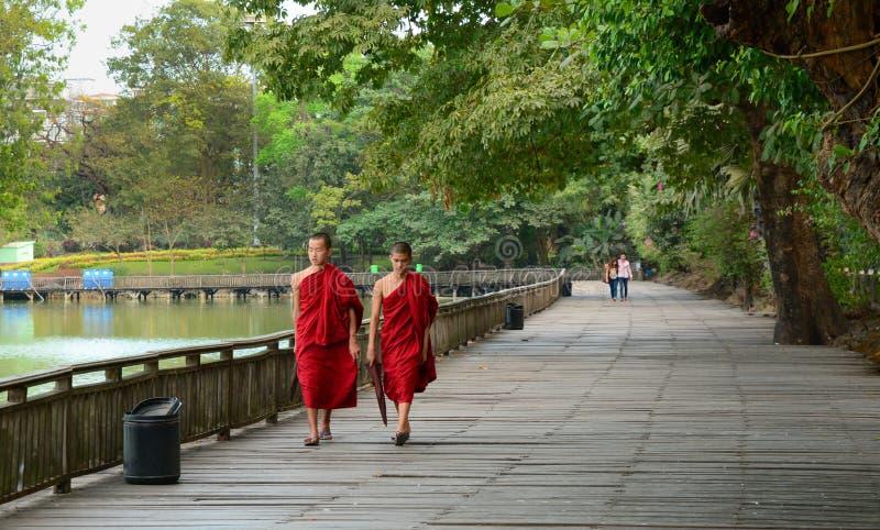Burmese monks walk around Kandawgyi Lake stock photo