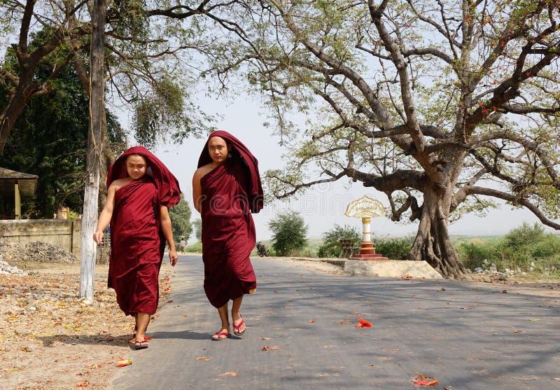 Burmese monks walking on street at Mingun village in Mandalay, Myanmar.  stock image