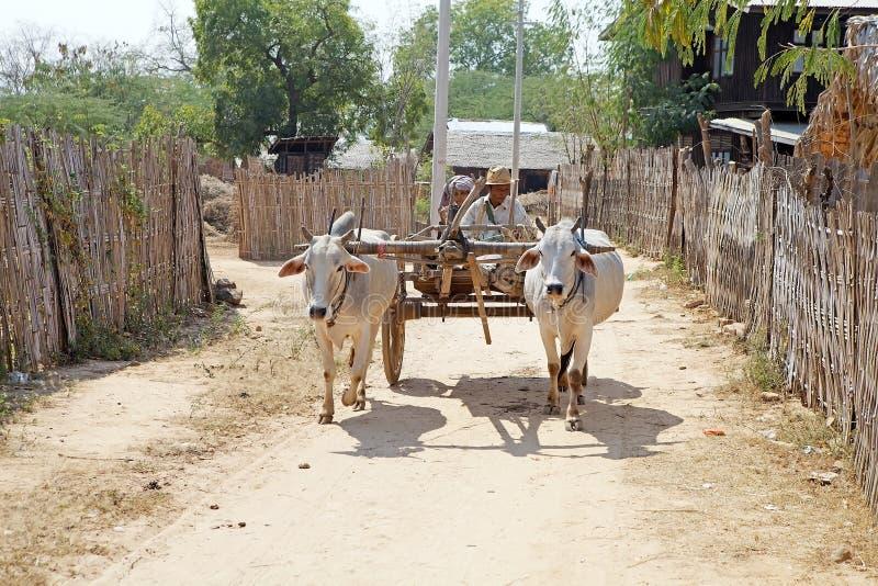 Burmese traditional vehicle, Myanmar stock photos