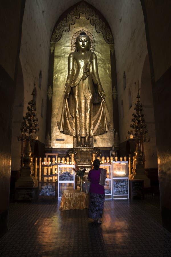Burmese woman praying in front of huge golden buddha. Burmese local woman praying in a temple in front of huge golden buddha in Bagan, Myanmar stock photo
