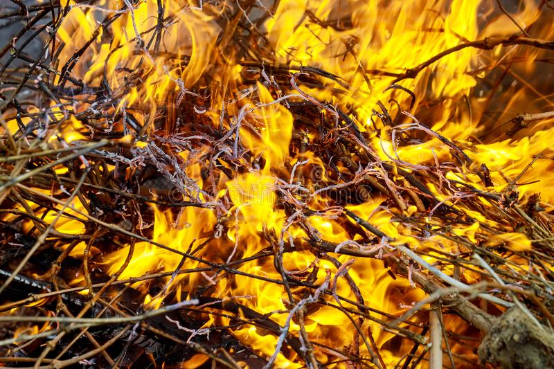 Burn waste fire flame and smoke.Global warming concept royalty free stock images