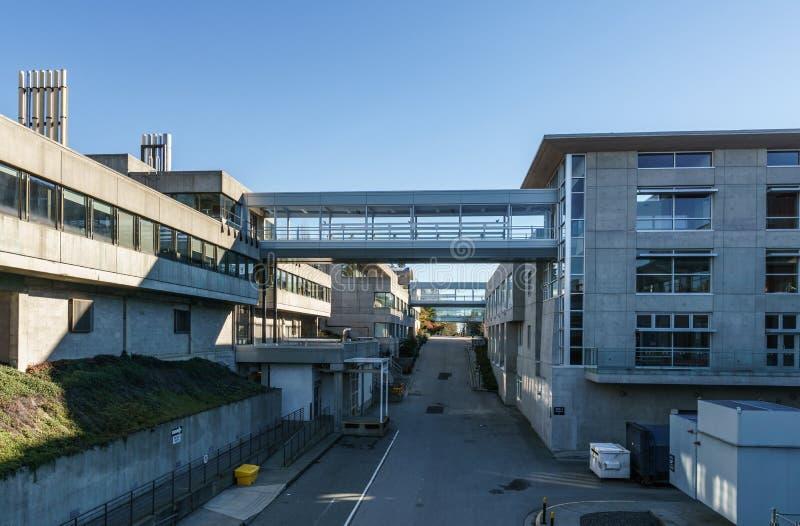 BURNABY, CANADA - 17 NOVEMBRE 2018: Simon Fraser University Campus sulla montagna di Burnaby fotografia stock