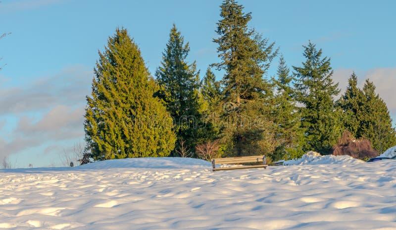 Download Burnaby-Gebirgstotempfahl Vancouver Im Januar 2017 Stockbild - Bild von bunt, architektur: 90228377