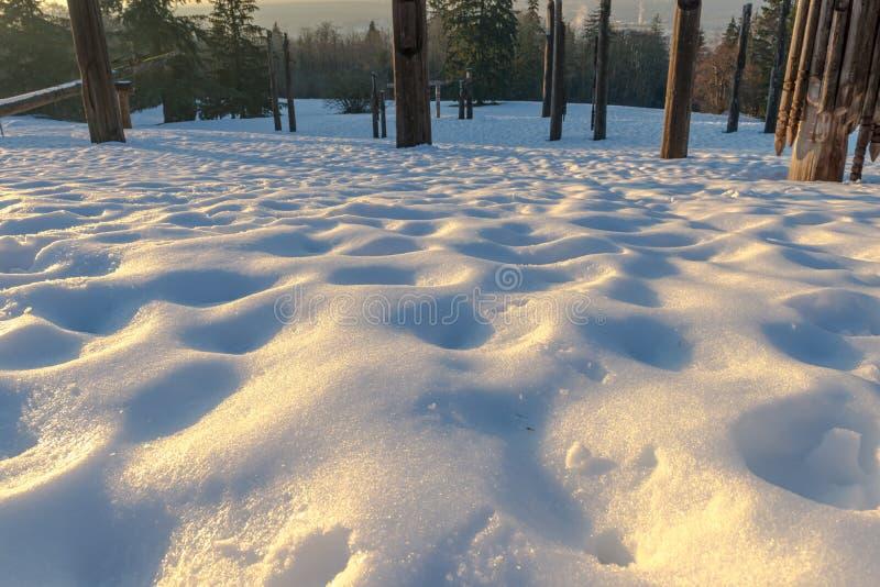 Download Burnaby-Gebirgstotempfahl Vancouver Im Januar 2017 Stockbild - Bild von berg, reise: 90230847
