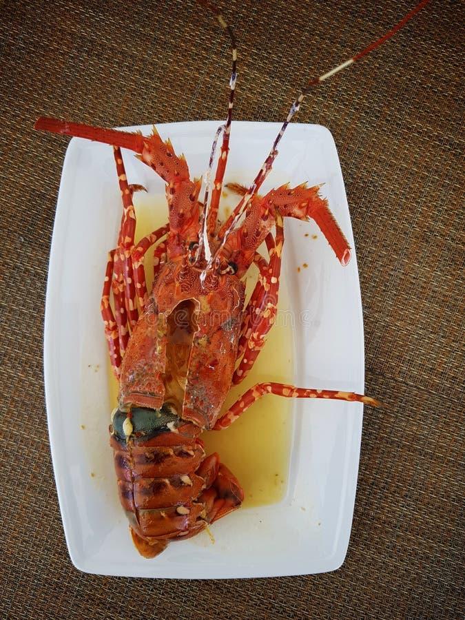 Burned sea shrimp, sea shrimp create good fats and proteins for the body. stock image